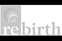 Exzellenzcluster REBIRTH (MHH)